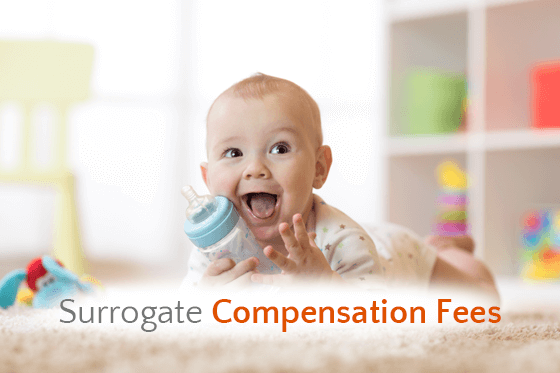 Surrogacy Compensation Fees